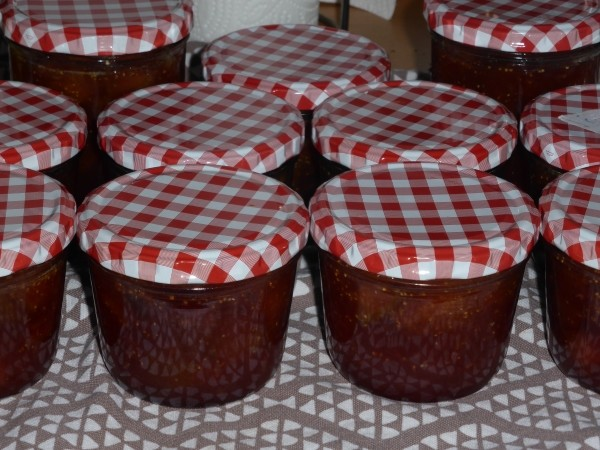 erdbeermarmelade selber machen rezepte