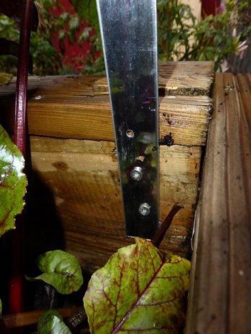 Sind diese Löcher gebohrt, dann werden die Flachstangen für das Hochbeetdach angeschraubt gemäß Markierung, die einen äußeren Bogen von 1,80 Metern erlaubt. Eben jene Spanne, welche man zuvor für den Dachradius ausgemessen hat.