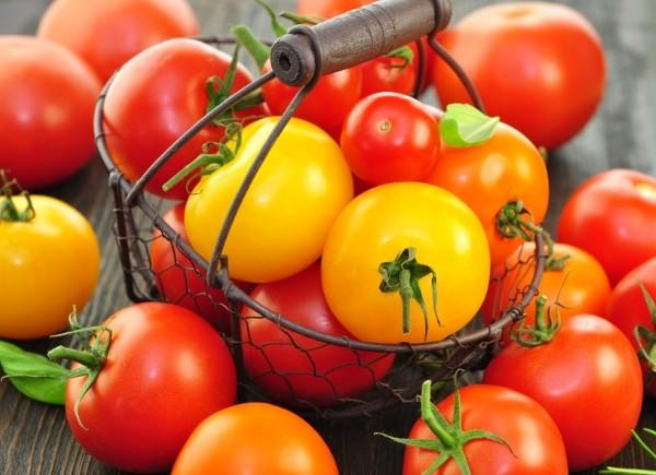 Tomaten aus Samen selber ziehen: Schritt-für-Schritt-Anleitung, vom Samenkorn bis zur Pflanzung.