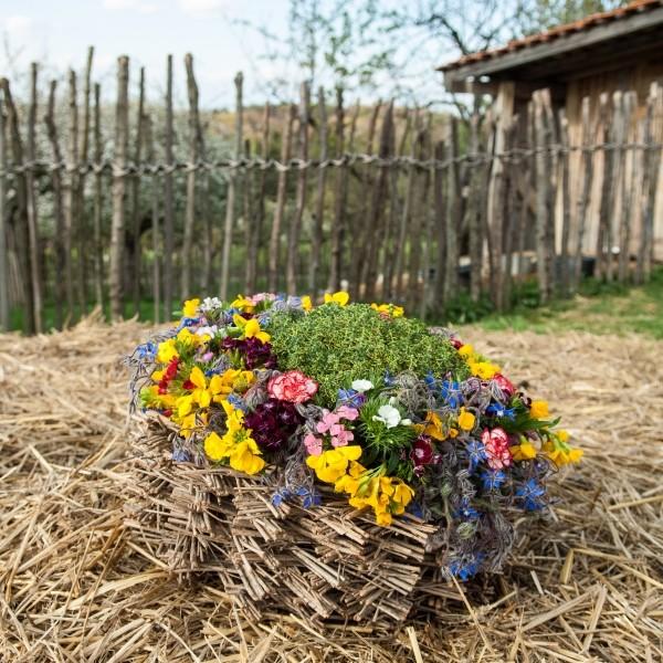 Natürlich Blumen von Holger Schweizer, Florist im ARD-Buffet, zaubert tolle Blumendeko aus dem Naturgarten. Foto: Conny Marx © 2015 Jan Thorbecke Verlag, Ostfildern