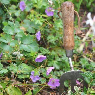 Gartengeräte und Gartenwerkzeuge: Was ist nötig, was nicht, Tops & Flops
