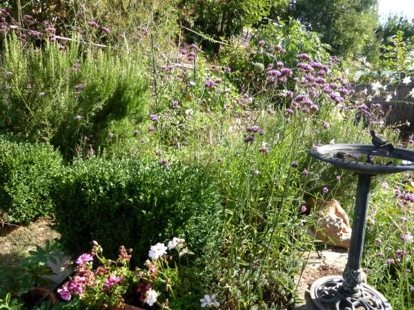 Garten Im September Pflege Tipps ? Sarakane.info Garten Im September Pflege Tipps