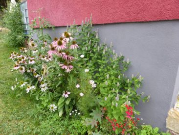 Bei uns ist nach und nach die rasenfläche für neue Blumen- oder Gemüsebeete verschwunden. Rasen abstechen, etwa 10 cm tief ausgraben, Boden lockern und gegebenenfalls mit Kompost, Hornspäne und Urgesteinsmehl auffrischen. Fertig ist er zur Bepflanzung. Hier wurde übrigens nichts gekauft. Alles ist aus Samen selbst gezogen.