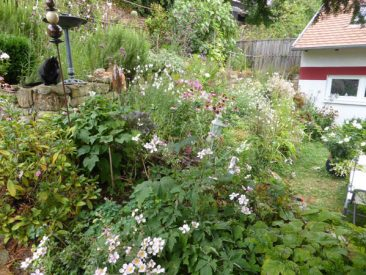 Wobei gepflanzt wird, was gefällt und, bei uns, über eine lange Gartensaison die Artenvielfalt unterstützt.