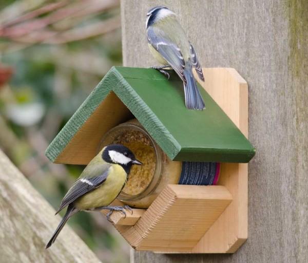 Gewinnspiel auf Muhvie.de: Gewinne eines von sechs Paketen, um die Artenvielfalt zu fördern