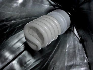 Hier die dazugehörige Birne: EIne Energiesparlampe mit echtem Tageslicht.