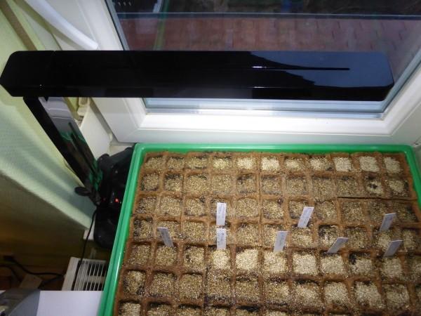 Pflanzenlampen zur Anzucht von Setzlingen