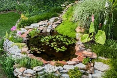 Alles Wissenswerte über natürliche Gartenteiche