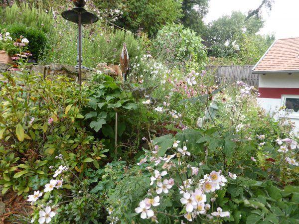 Garten anlegen, Ideen, Anleitung und Praxistipps