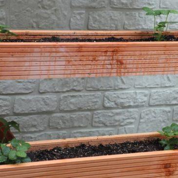 Pflanztreppe selber bauen fürs Vertical Gardening