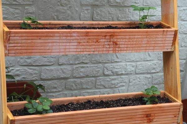 pflanztreppe selber bauen f r vertical gardening. Black Bedroom Furniture Sets. Home Design Ideas