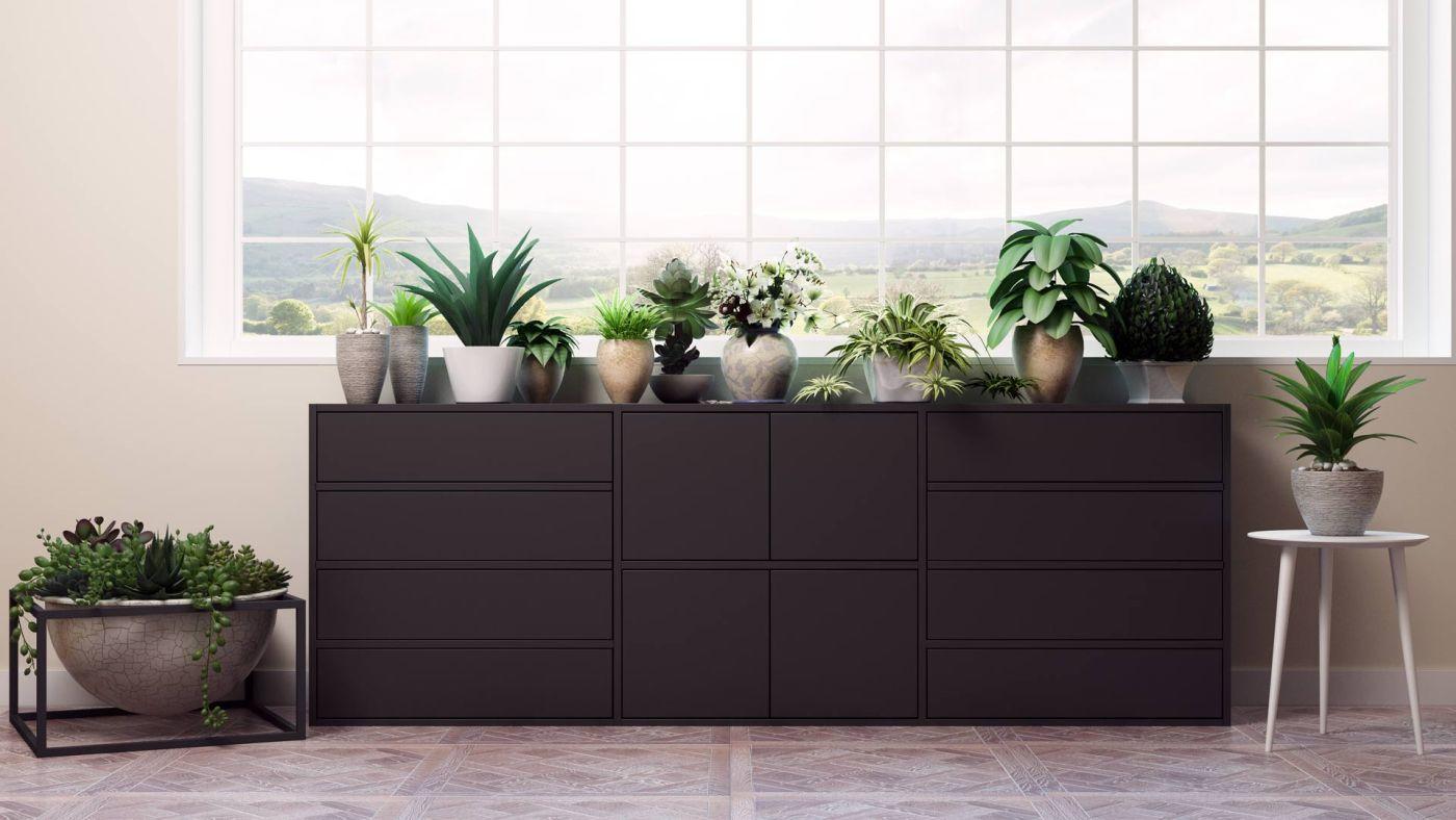 Ob Kaltwintergarten oder Warmwintergarten - im Wintergarten gehören Pflanzen einfach dazu