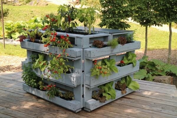 vertical gardening gemüse