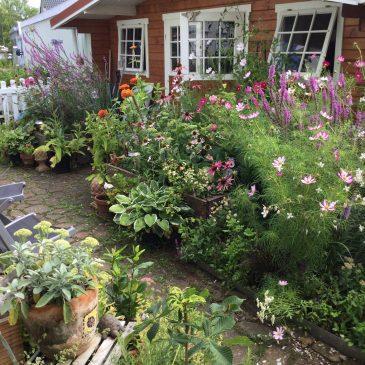 So vielseitig: Ein Gartenhaus für jeden Geschmack