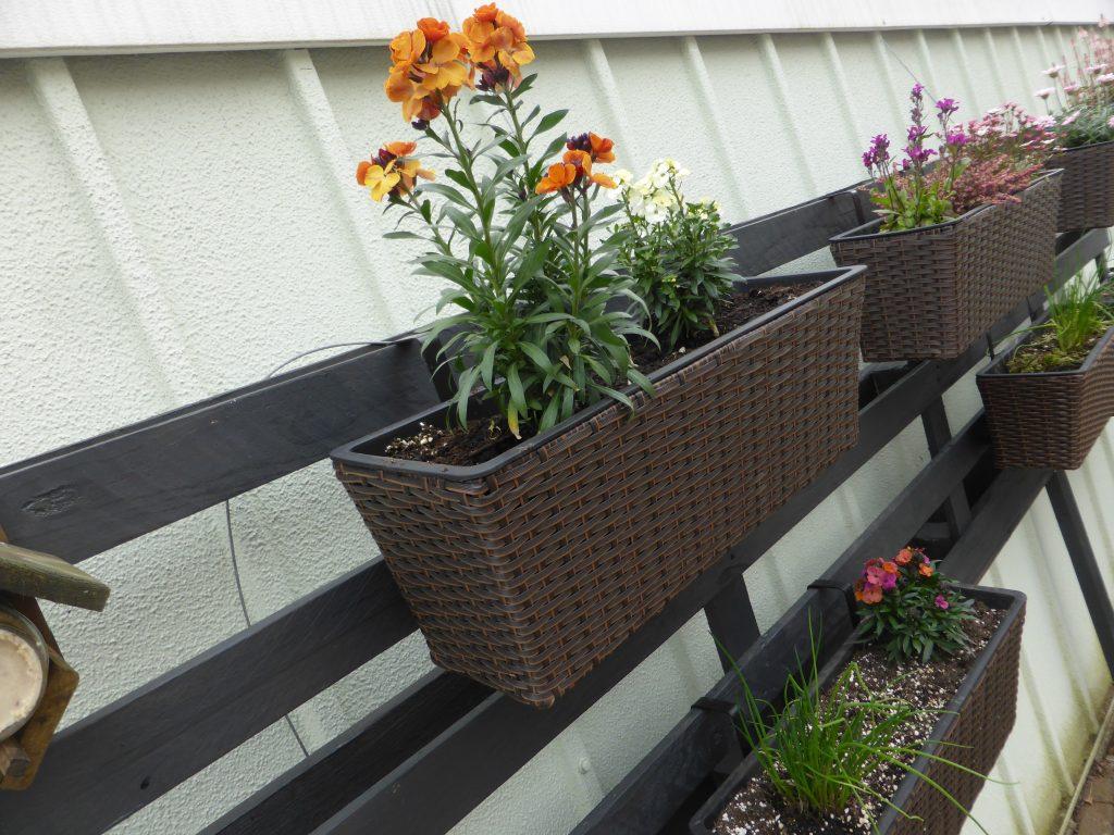 Vertikaler Garten aus Paletten: Idee und Anlietung zum Selbstbau