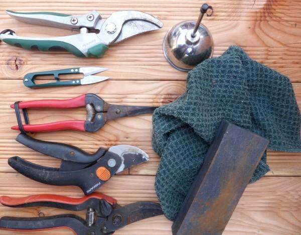 GArtengeräte pflegen, Gartenschere schleifen