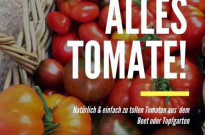 """""""Alles Tomate!"""": Ratgeber, von der Aussaat bis zur tollen Ernte"""