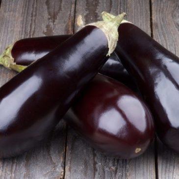 Oh wie Aubergine: Samen rechtzeitig aussäen und im Sommer genießen