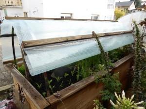 Dach für Hochbeet selber bauen
