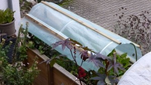 Dach für ein selbstgebautes Hochbeet, ebenfalls selbst gebaut.