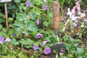 Gartengeräte und Gartenwerkzeuge: Was ist sinnvoll, was nicht, welche sind hochwertig, welche ein Flop