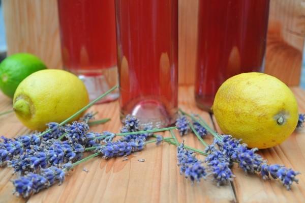 Sirup-Rezept: Lavendelsirup selber machen
