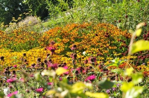 Gartengestaltung: Bauerngarten anlegen, Tipps und Anleitung
