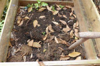 Kompost anlegen, auch auf dem Balkon