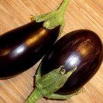 Aubergine aus Samen selber ziehen Anleitung