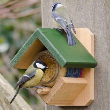 Mit Muhvie.de gewinnen & Artenvielfalt fördern
