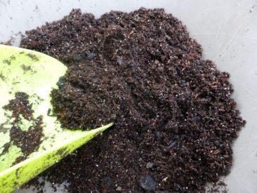 Und das Ergebnis: Selbstgemachte Pflanzerde, optimal auf die Pflanzenbedürfnisse abstimmbar.