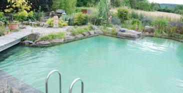 Abtauchen und die Kullisse im Schwimmteich genießen. Foto: © Pool for Nature