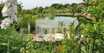 Hier scheint der Schwimmteich mit der Natur im Garten zu verschmelzen. Foto: © Pool for Nature