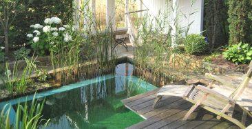 Oder auf kleinster Fläche. Ein Hingucker und eine erfrischende Abkühlung ist auch hier garantiert. Foto: © Pool for Nature
