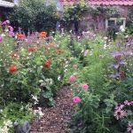 Garten neu anlegen und gestalten: Tipps, Ideen und Wissenswertes.