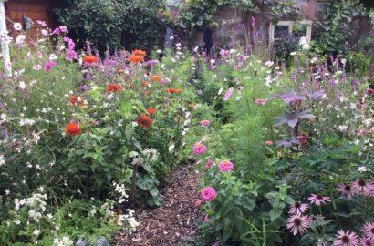 Alles auf Anfang: Garten anlegen, die Basics