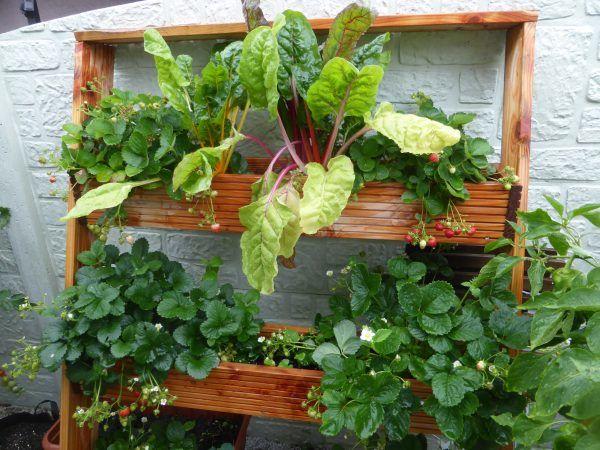 Diy Ideen Garten Muhvie De Garten Balkon Genuss