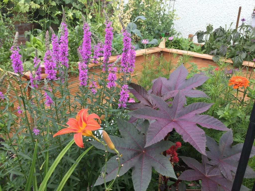 Hochbeet für den Garten selber bauen und Rücken schonen