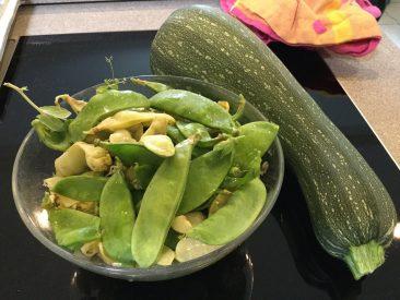 Mehrmals so eine Schüssel Zuckerschoten; 1 x im März direkt gesät und vorgezogen (kaum ein Unterschied), Anfang Juni für die späte Ernte nochmals vorgesät. Die Zucchini ist ausnahmsweise aus dem Topfgarten.