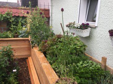 Hochbeet Selber Bauen Anleitung Befullen Und Richtig Bepflanzen