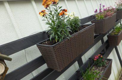 DIY: Palette für den vertikalen, bienenfreundlichen und essbaren Garten