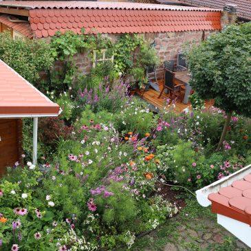 Garten anlegen Kosten