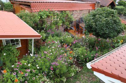 Was kostet es, einen Garten anzulegen?