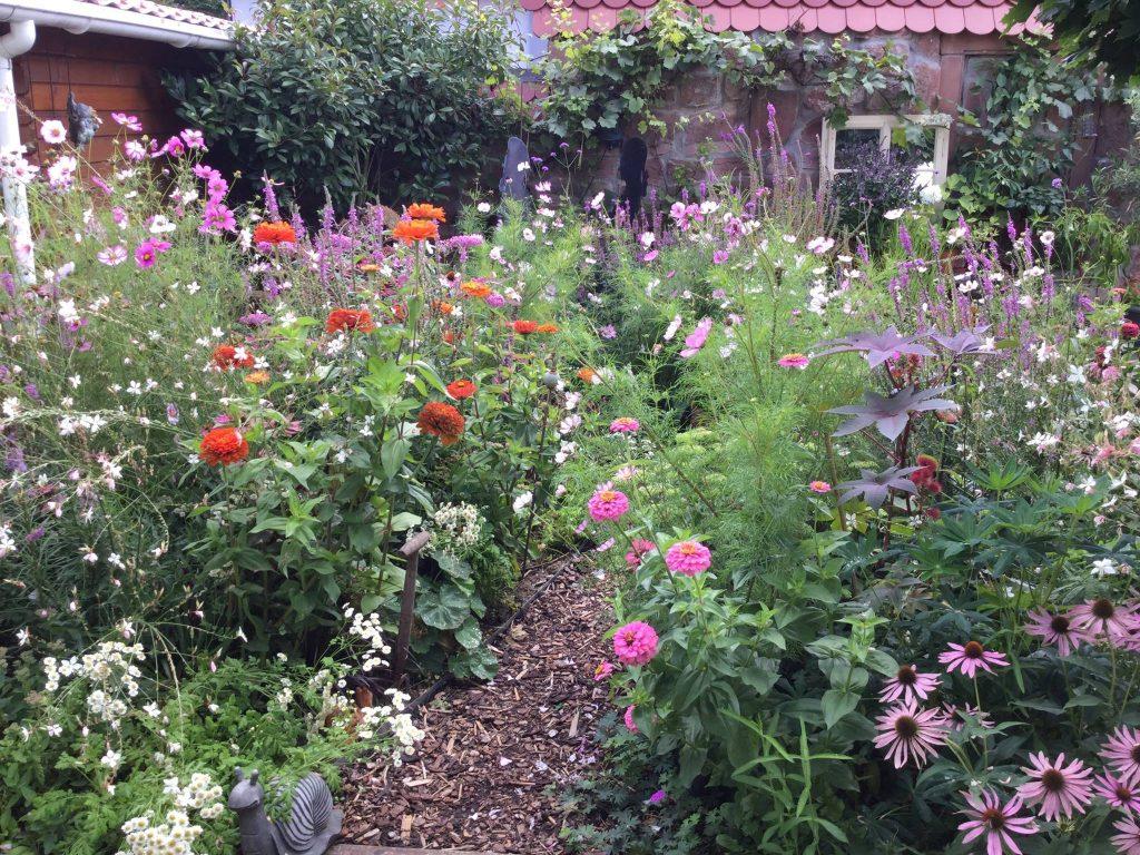 Bienenfreundlicher Garten anlegen Tipps