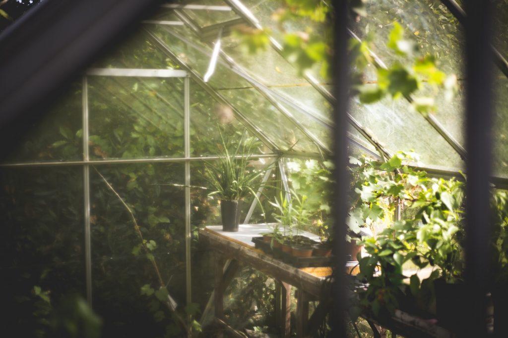 Sommerschlussverkauf Schnäppchen Gartengewächshaus
