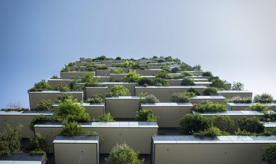 Urban Gardening auf dem Balkon – Permakultur im Trend