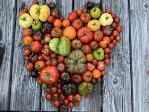 Landwirtschaft nachhaltiger werden muss und sie bei Natur-Gärtnern was lernen kann