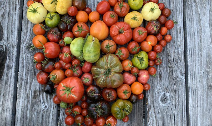 Warum die Landwirtschaft von (Natur-)Gärtnern lernen kann