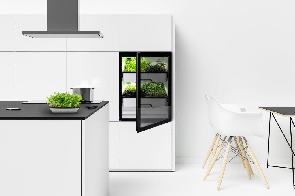 Indoor Gardening mit Plantcube Gewächshausschrank