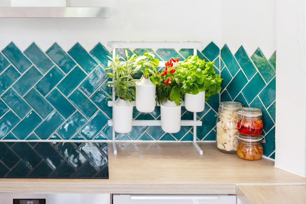 Modulo Smart Indoor Gardening Pret a Pousser 2